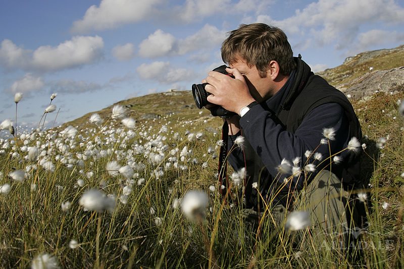 Job Payee Online Photography Job – Job of a Photographer